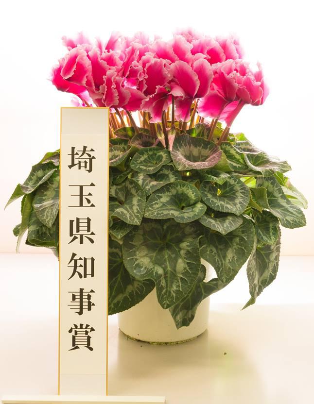 11年連続金賞受賞